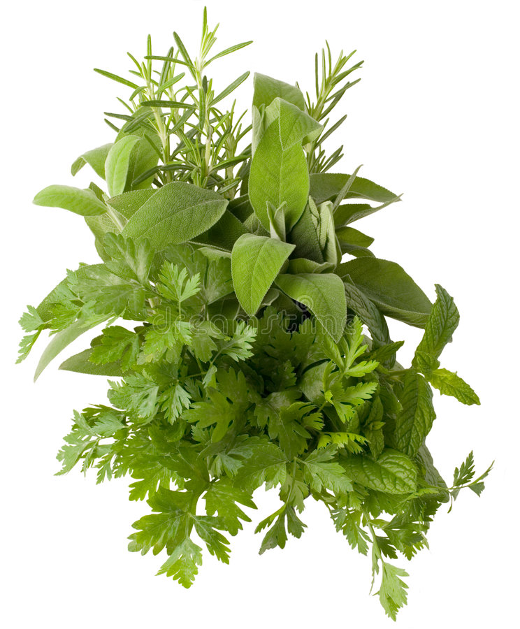 Download Aromatic herbs stock photo. Image of cuisine, healthy - 9054438