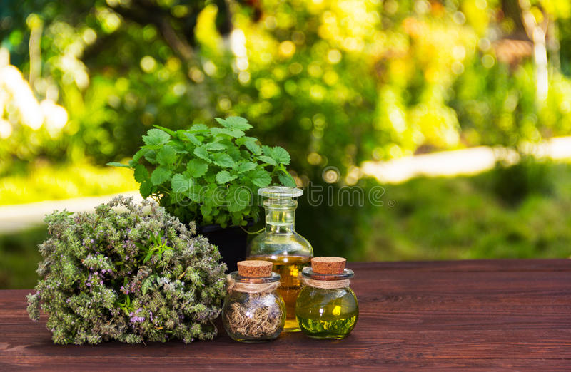 Aromatic herbs and essential oils. Natural cosmetics. Natural medicines. Peppermint and fragrant thyme royalty free stock photo