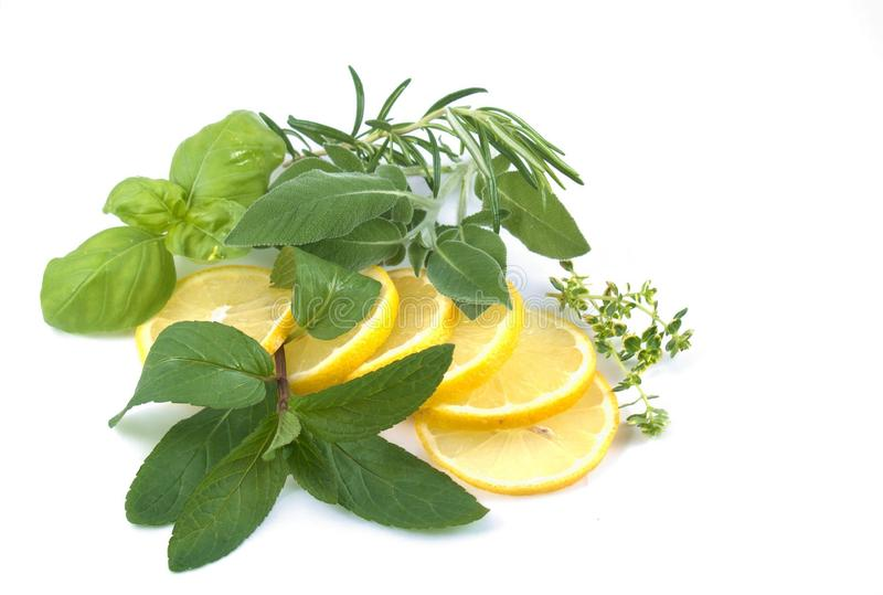 Aromatic herbs and lemon slices stock photos