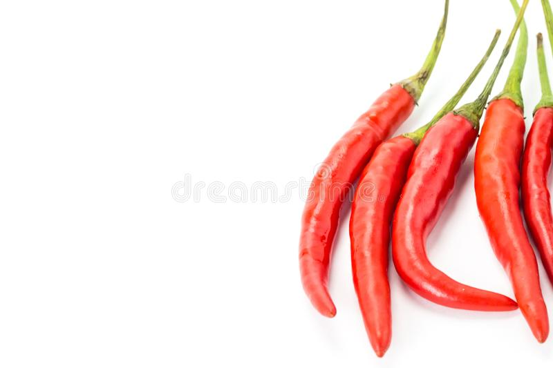 Aromatic hot pepper red base design decoration invitation card on white background vertical pods stock images