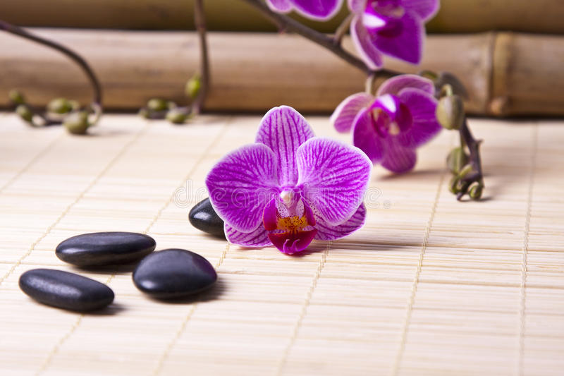 Aromatic oil bottle massage royalty free stock photo