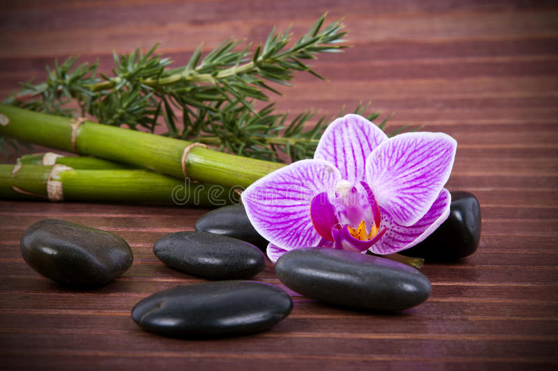 Aromatic oil bottle massage royalty free stock photography