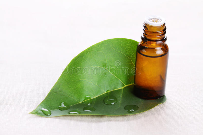 Download Aromatic Oil With A Green Leaf Stock Photo - Image: 11731654
