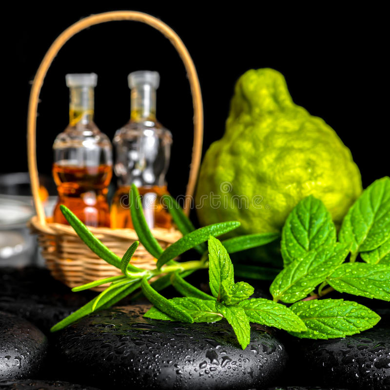 Aromatic spa of bottles essential oil in basket, fresh mint, rosemary and bergamot fruits on black zen basalt stones with. Dew, closeup royalty free stock photos