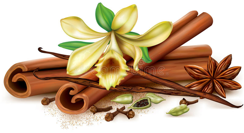 Aromatic spices. On a white background. Vector illustration stock illustration