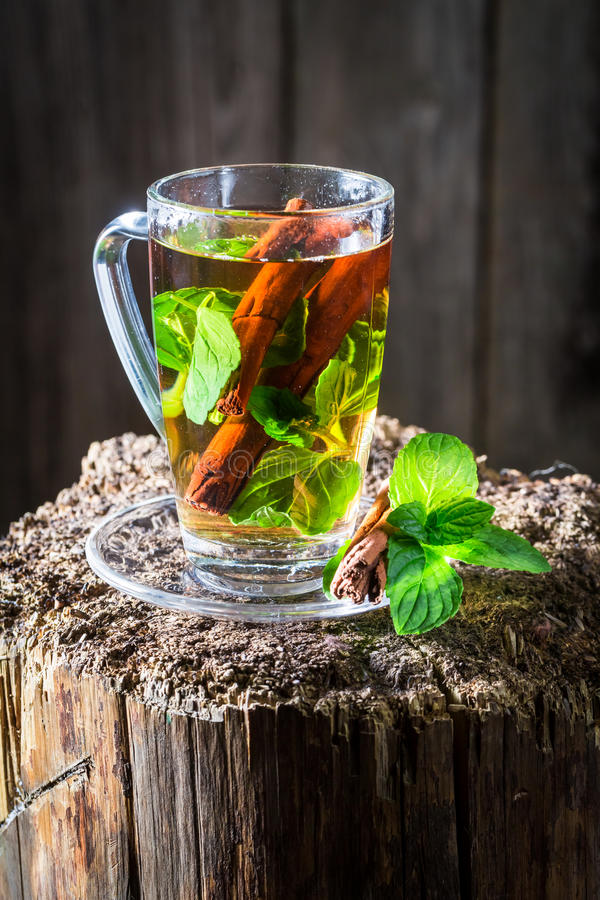 Aromatic tea with cinnamon bark and green leaves stock photography