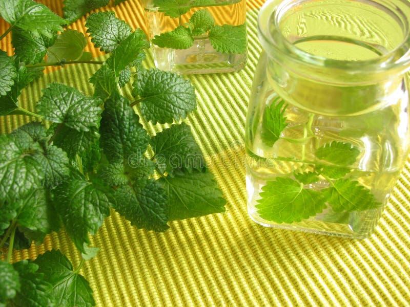 Aromatische azijn royalty-vrije stock foto's