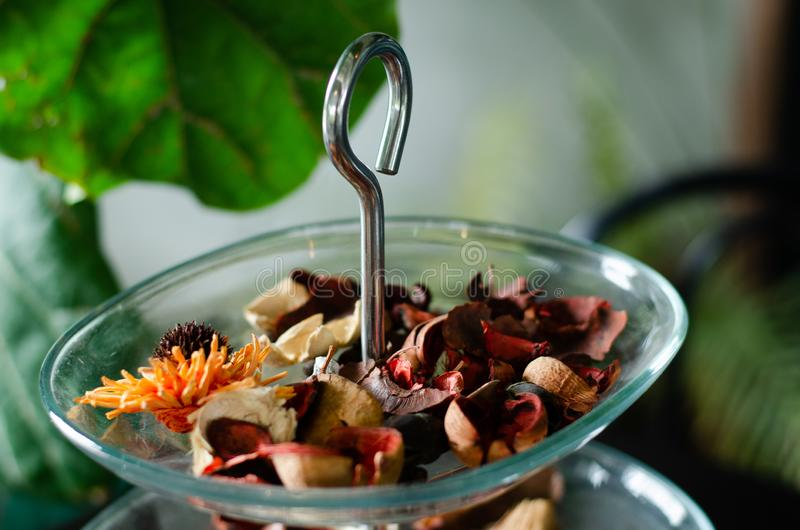 Aromatische getrocknete Kräuter in einem Glasbehälter eingestellt in klimatisiertes Café 2 lizenzfreies stockfoto