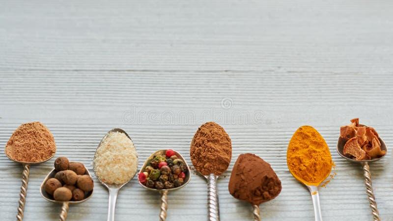 Aromatische indische Gewürze und Kräuter auf Metalllöffeln: Sternanis, wohlriechender Pfeffer, Zimt, Asafötida, Gelbwurz Gewürzbe lizenzfreies stockbild