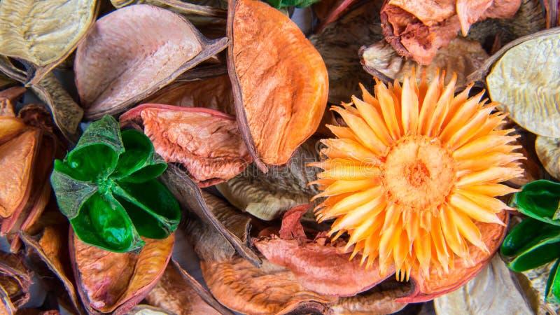 Aromatisk garnering för färg arkivfoton