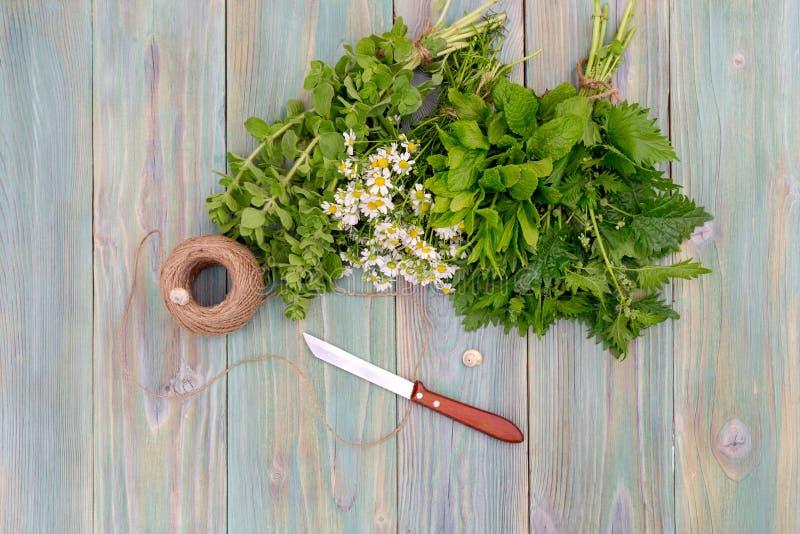 Aromatisk homeopatisk örtnärbild royaltyfri fotografi