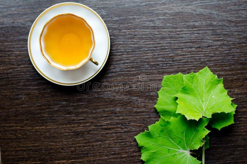 Aromatisk organisk naturlig örtte från sidatussilagot royaltyfri fotografi