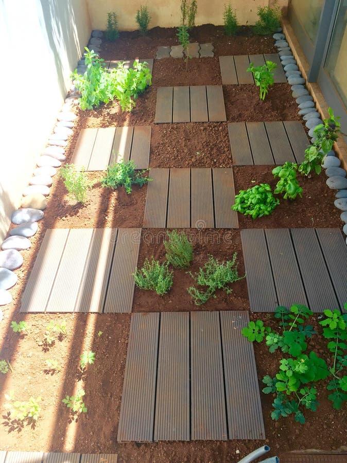 aromatisk trädgård royaltyfri foto