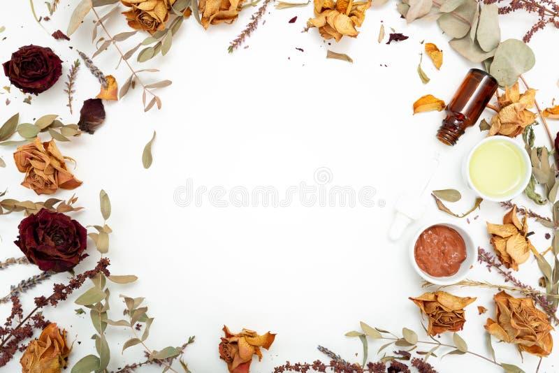 Aromatiska botaniska skönhetsmedel Torkad örtblommablandning, ansikts- gyttjaleramaskering, oljor som applicerar borsten Holistis royaltyfri foto