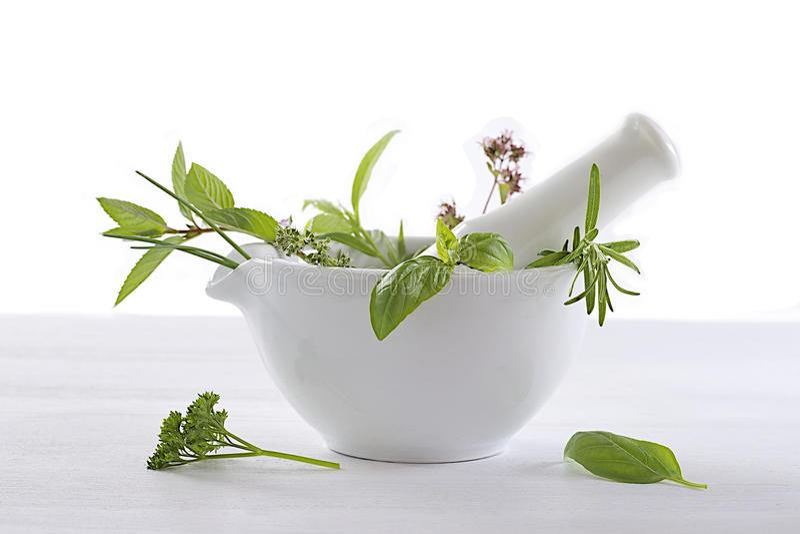Aromatiska och läkarundersökningväxter i en mortel arkivfoton