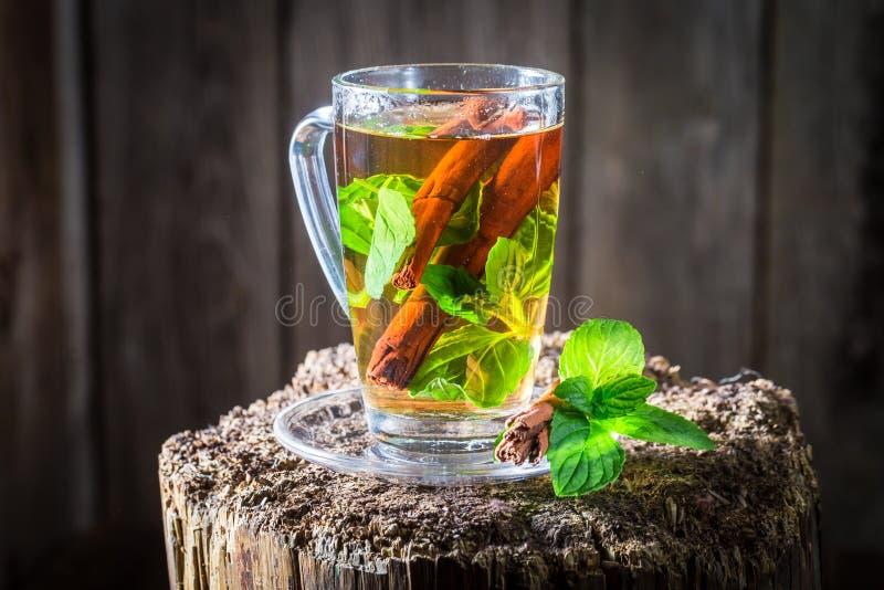 Aromatiskt och nytt te med sidor för kanelbrunt skäll och gräsplan arkivbild