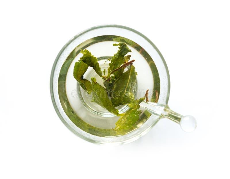Aromatyczna zielona herbata warząca w filiżance, topview zdjęcie stock