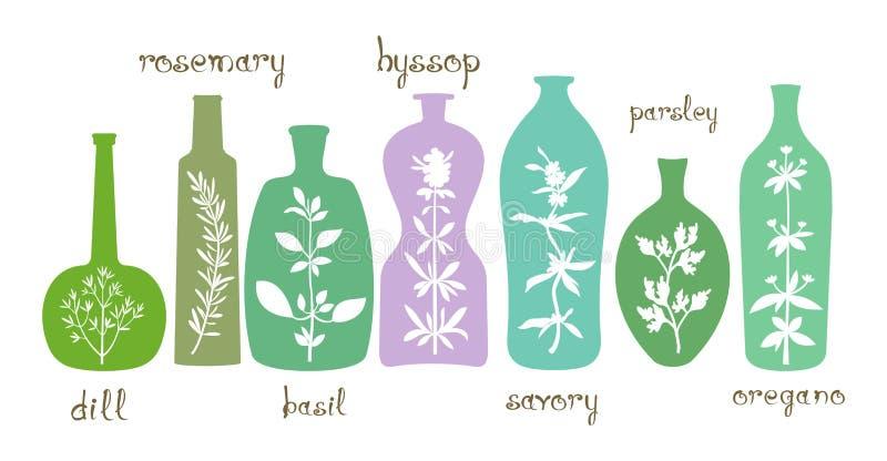 Aromatyczne ziele podstawy ilustracji