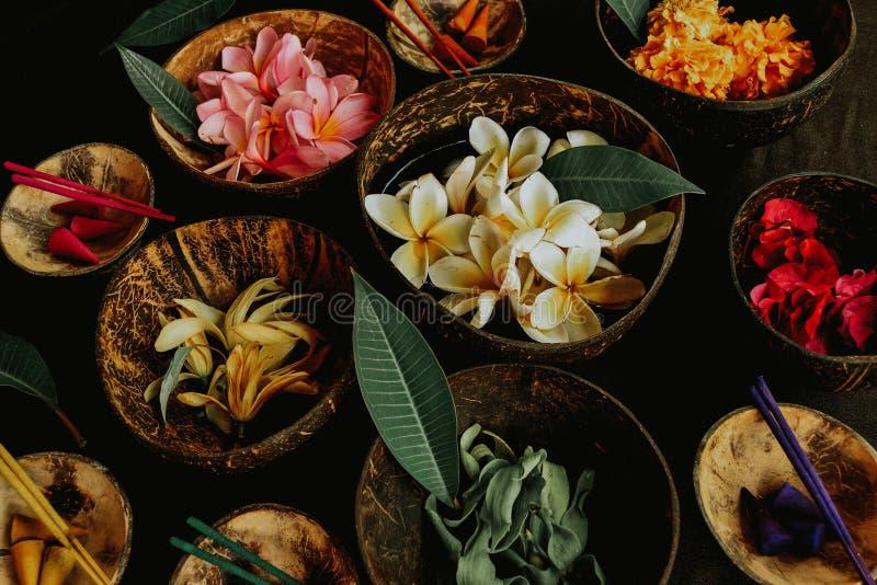 Aromatycznego zdroju tropikalni kwiaty zdjęcie royalty free