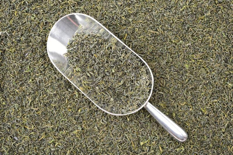 Aromatyczni zielona herbata liście z nagietków płatkami i drewnianą łopatą zdjęcia royalty free