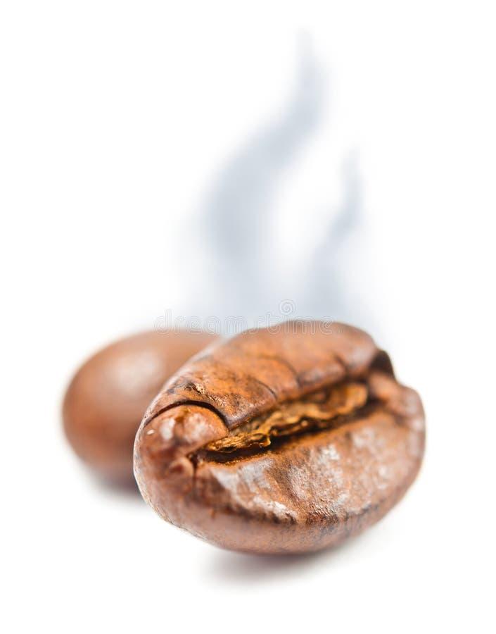 Arome de grain de café macro avec la vapeur image libre de droits