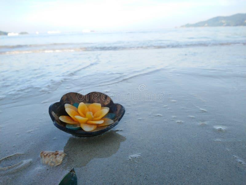 Aromstearinljus i kokosnötskalet som svävar på stranden arkivfoto