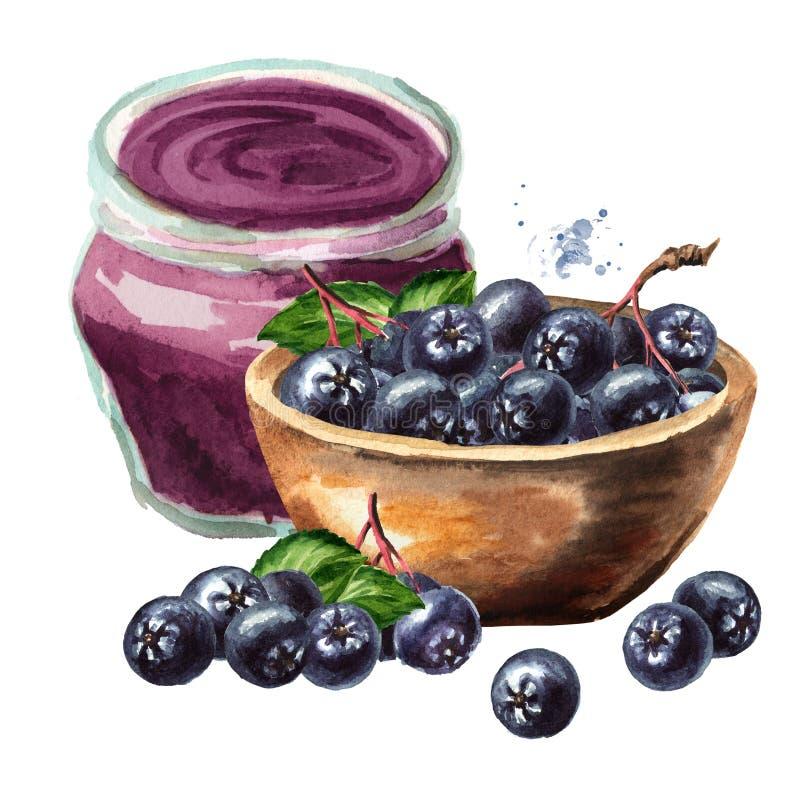 Aronia homemade jam and Bowl with Aronia berries or black chokeberry Ilustracja odręczna w kolorze wodnym, wyizolowana na biało ilustracja wektor