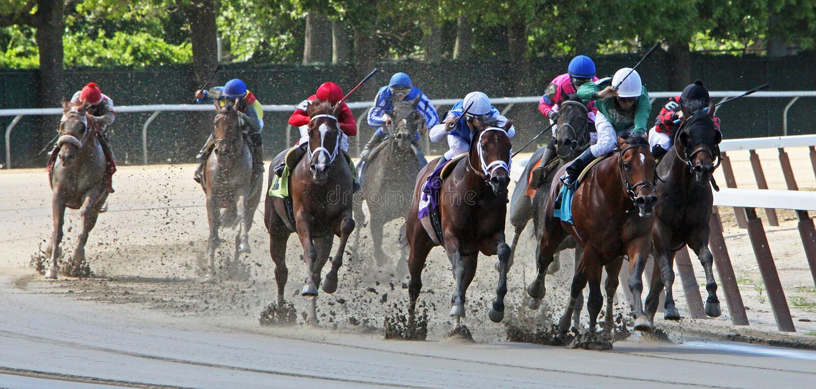 Around the Far Turn. ELMONT, NY - JUN 23: The field takes the far turn in a maiden race at Belmont Park on June 23 in Elmont, NY. Eventual winner is Bailey Park stock photography
