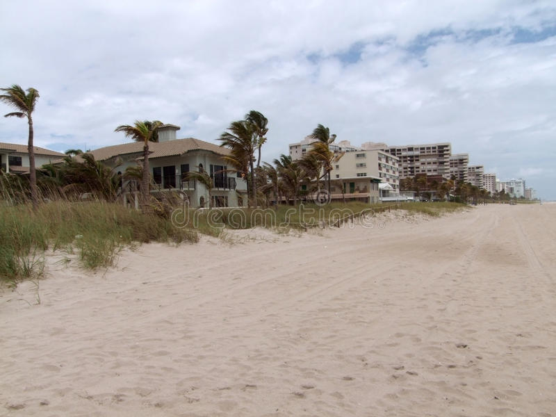 Download Around Fort Lauderdale stock photo. Image of palm, settlement - 36528546