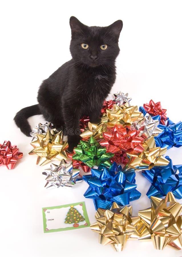 Arqueamientos del gato negro y de la Navidad fotografía de archivo