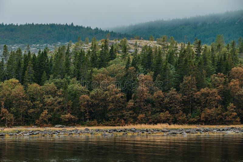 Arquipélago de Kuzova no Mar Branco, vista do topo da ilha alemã Kuzov imagens de stock royalty free