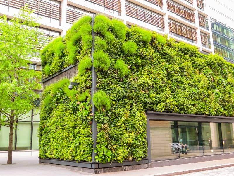 Arquitectura ecológica, fachada viva verde del edificio fotos de archivo