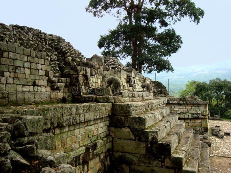 Arquitectura maya y ruinas copan en Honduras fotos de archivo libres de regalías