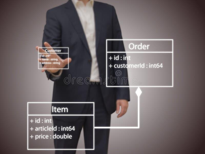 Arquiteto do software fotos de stock