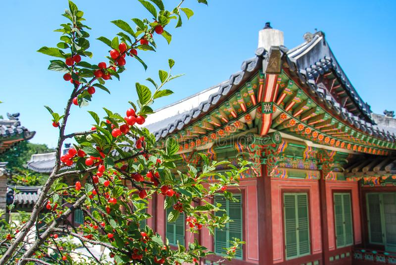 Arquitetura coreana tradicional em alguma vila, Coreia do Sul do estilo foto de stock royalty free