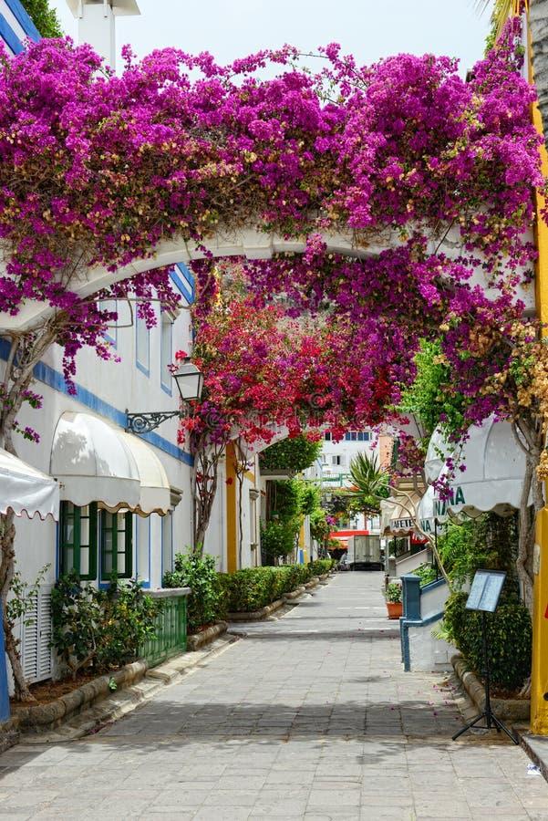 Arquitetura da cidade de Puert de Mogan na ilha amarela de Gran Flor da buganvília de Colorfull fotografia de stock