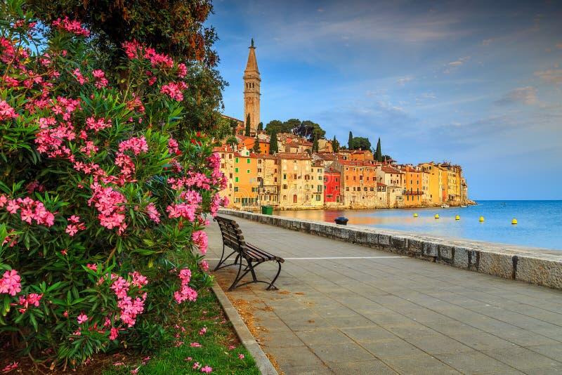 Arquitetura da cidade impressionante com a cidade velha de Rovinj, região de Istria, Croácia, Europa fotos de stock royalty free