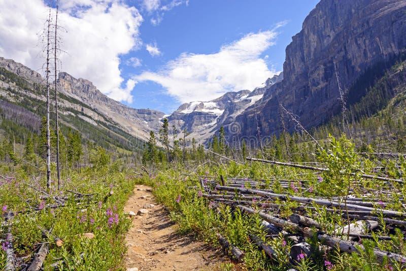 Arrástrese en un valle de la montaña imagen de archivo libre de regalías