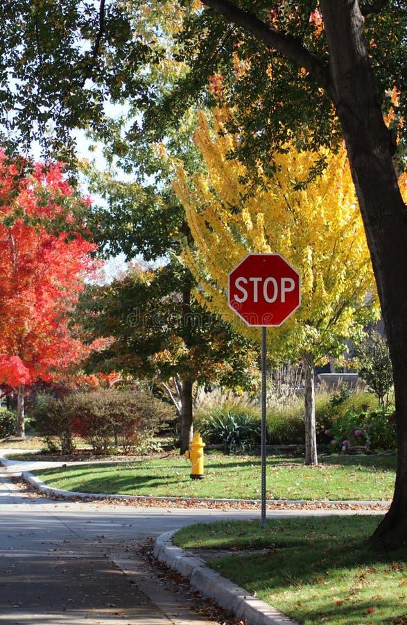 Arrêtez le signe et la bouche d'incendie jaune à l'intersection dans le voisinage résidentiel avec les arbres lumineux de chute à photos libres de droits