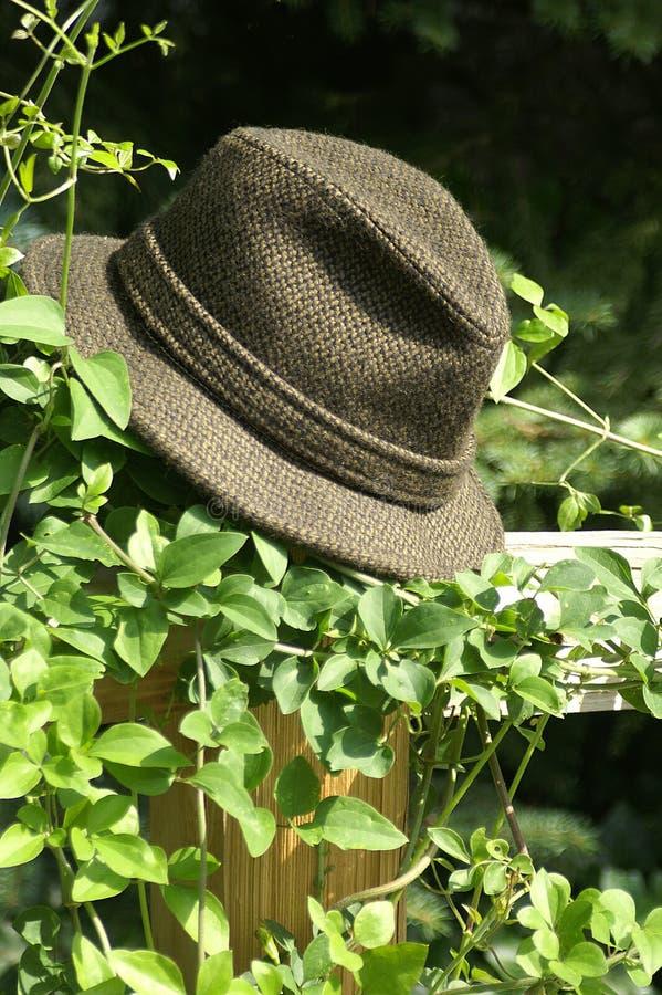Arrêtez votre chapeau? photos libres de droits
