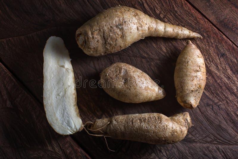 Arracacia xanthorrhiza叫白色红萝卜特写镜头 库存图片