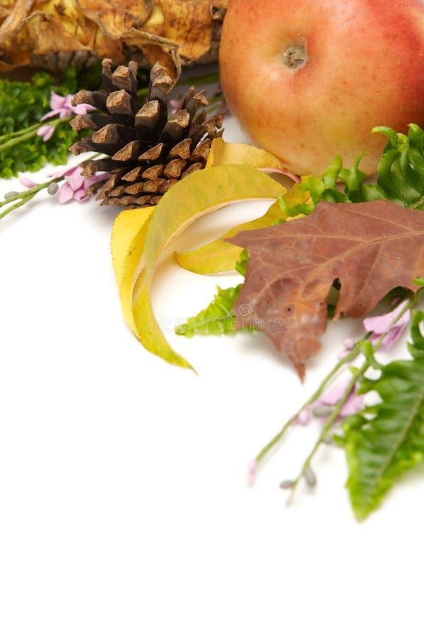 arragement jesienni liście fotografia stock