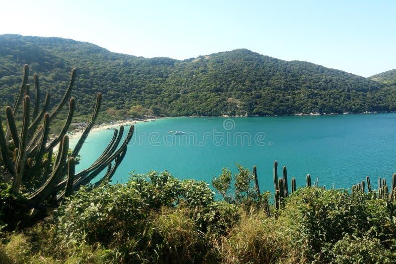 Arraial gör Cabo - stranden och vegetation med en storartad blå himmel i Rio de Janeiro royaltyfri bild