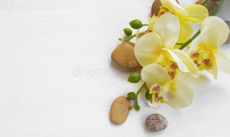 Arrangement de station thermale d'orchidée photos libres de droits