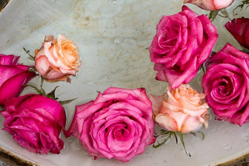 Arrangement floral des roses roses dans le bassin d'une vieille fontaine en pierre image stock