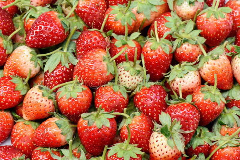 Arrangement fresh strawberry organic. For background royalty free stock image
