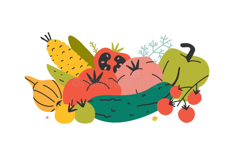Arrangement of organic vegetables, group of vector hand drawn various kinds of veggies. Harvest products isolated on white backgro. Und. Modern flat cartoon royalty free illustration