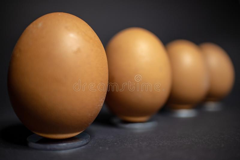 Arrangement of several eggs for Easter royalty free stock image