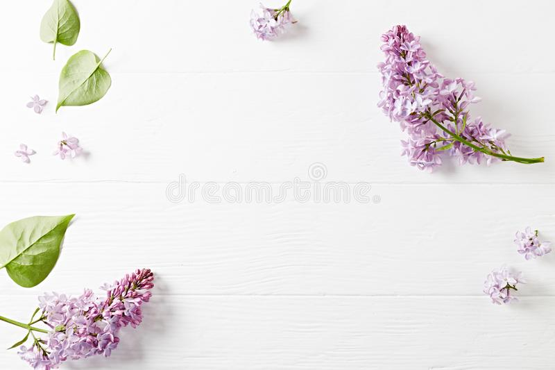 An arrangement of spring lilac flowers on white wooden background stock images