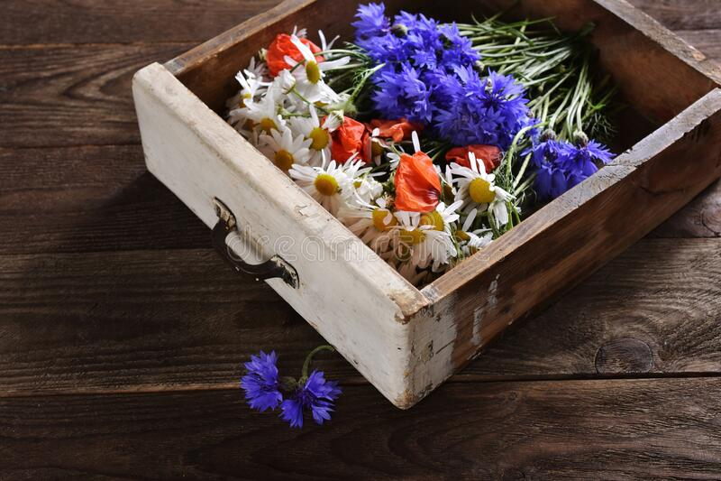 Arrangement with wildflowers in vintage wooden drawer royalty free stock photography